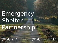 The Emergency Shelter Partnership